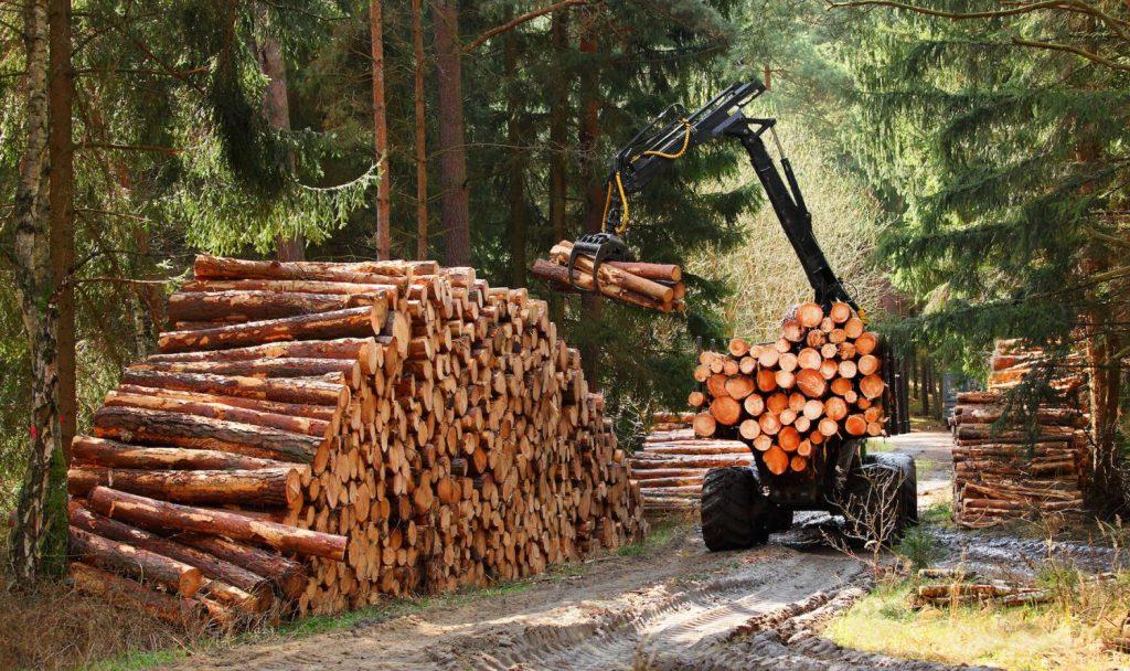 Hållbart uttag av skogsbränsle